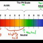 pH Balance in Body is Vital to Good Health